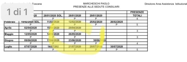 Presenze in consiglio regionale toscana di Marcheschi